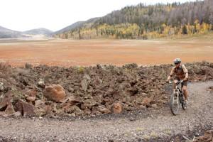 cedar bike III